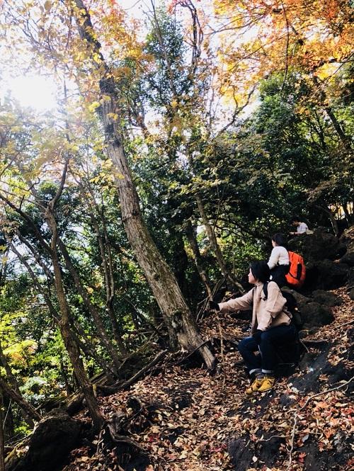鶴見岳、登頂してきました♪