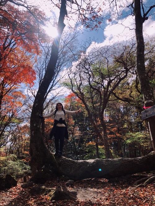 別府鶴見岳登山の時の写真