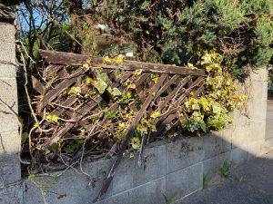 大分市Y様邸フェンス取付工事 リフォーム前(木製フェンス)